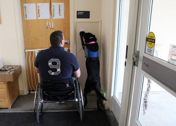 Service+Dogs+Aid+War+Veterans+Upon+Return+3xA_U68FfFel